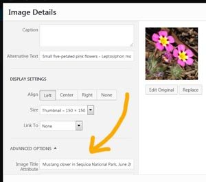 Editing image title attribute - screenshot