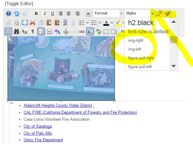 JCE editor showing an image selected and the styles menu open