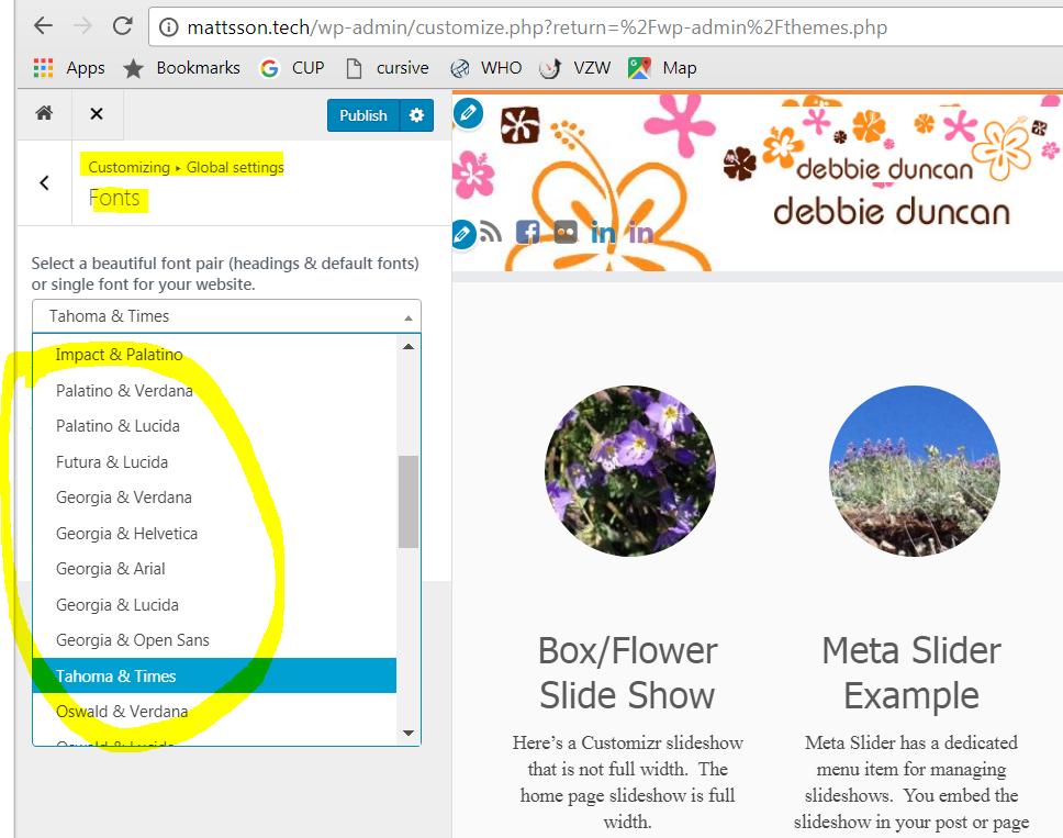 WordPress admin screen showing customizer for Customizr theme's Google Fonts setting